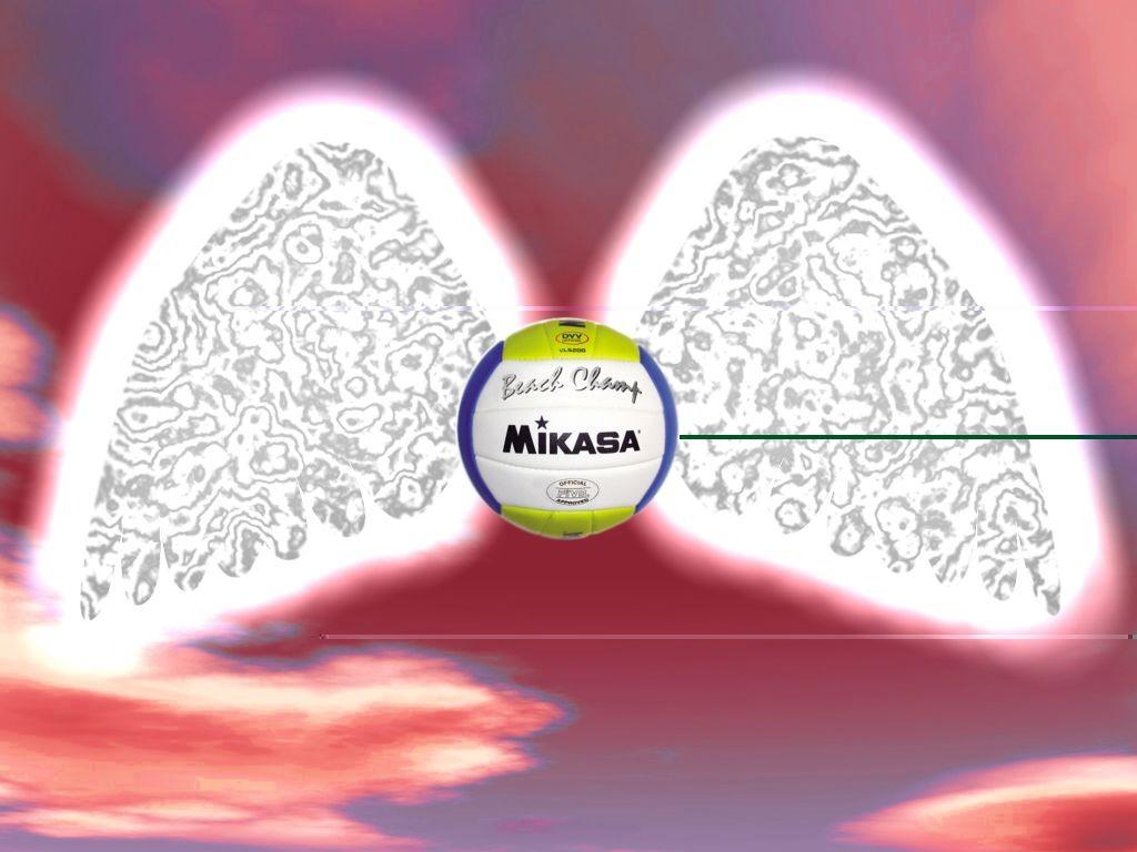 Mikasa verleiht Flügel